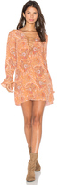 Majorelle Roundup Dress
