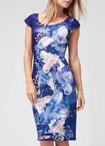 Jacques Vert Magnolia Crepe Print Dress