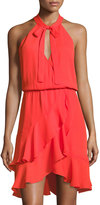 Parker Diane Fit & Flare Ruffle Dress, Red