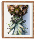 DENY Designs Deb Haugen Pineapple 2 Wall Art