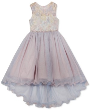 Rare Editions Little Girls Embroidered Illusion Mesh Dress