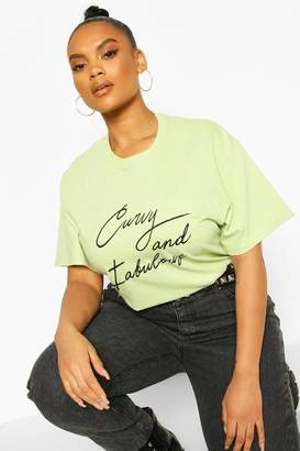 boohoo Plus Curvy And Fabulous Slogan T-Shirt