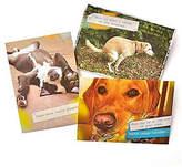 GARTNER STUDIOS Gartner Greetings Pet Humor Greeting Cards 3 pack, Just For Fun