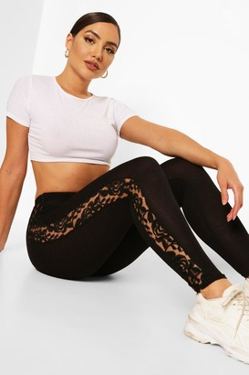 boohoo Jersey Lace Panel Legging