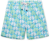 Pink House Mustique - Mid-length Sea Grape-print Swim Shorts