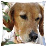 "iRocket - Dog - Throw Pillow Cover (24"" x 24"", 60cm x 60cm)"