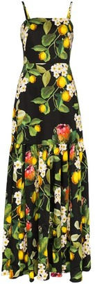 Borgo de Nor Lemon Blossom Print Summer Dress