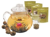 Primula Flowering Tea and Tea Pot Gift Set