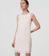 LOFT Petite Floral Lace Shift Dress