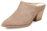 Seychelles Setchelles Intrigue Mule