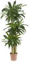 Bed Bath & Beyond Nearly Natural Real TouchIndoor/Outdoor 57-Inch Tropical Silk Corn Stalk Dranaena Plant