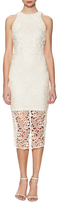 Alexia Admor Lace Illusion Midi Dress