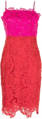 Milly Razzamatazz floral lace dress