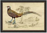 Pottery Barn Crackled Pheasant Framed Print