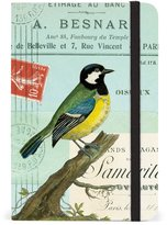 Cavallini & Co. 4 by 6-Inch Birds Small Notebook, 256-Page
