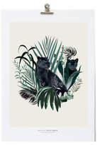 Maison Baluchon Né18 A3 Jungle Illustration