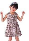 Fheaven Baby Girls One Piece Sleeveless Round Neck Floral Dress Tutu Summer Party Dress (3/4T, Pink2)
