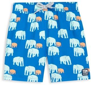 Tom & Teddy Baby's, Little Boy's & Boy's Elelphant Swim Trunks