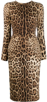 Dolce & Gabbana Leopard Print Bodycon Dress