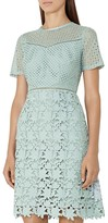 Reiss Heather Mixed-Lace Dress