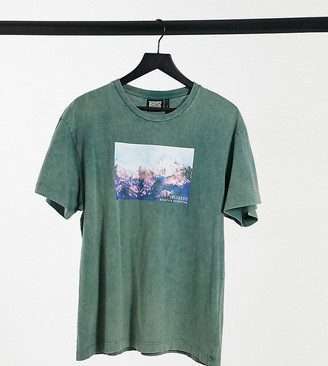 Reclaimed Vintage Inspired T-shirt in dark green with scenic print