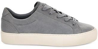 UGG Zilo Suede Sneakers