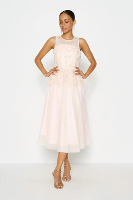 Coast Lace Bodice Tulle Skirt Dress