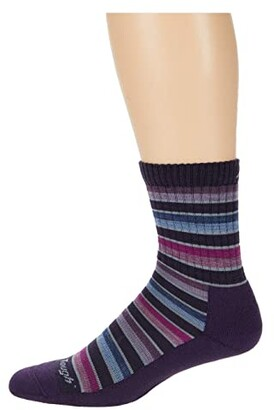 Darn Tough Vermont Decade Stripe Micro Crew Midweight with Cushion (Blackberry) Women's Crew Cut Socks Shoes
