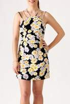 Sugar Lips Daisy Print Dress