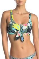 Body Glove Oahu Kate Bikini Top