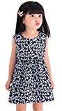 Fheaven Baby Girls One Piece Sleeveless Round Neck Floral Dress Tutu Summer Party Dress (4/5T, Navy)