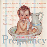 Penguin Random House Little Big Book Of Pregnancy By Katrina Fried & Lena Tabori