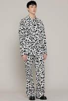 M)r Leopard Pt
