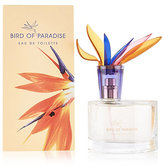 Per Una Birds of Paradise Eau de Toilette 60ml