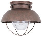 Sea Gull Lighting Single-Light Sebring Outdoor Ceiling