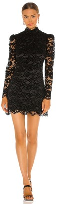 LIKELY Cupani Lace Dress