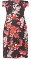 Dorothy Perkins Womens DP Curve Plus Size Red Floral Bardot Shift Dress- Red