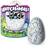 Hatchimals Draggle Green Egg