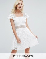 Miss Selfridge Petite Lace Skater Dress