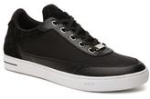 Steve Madden Venturre Sneaker