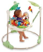 Fisher-Price RainforestTM JumperooTM