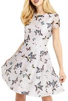 Oasis Butterfly Lace Dress, Multi Grey