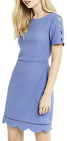 Oasis Regular Length Scallop Sleeve Dress