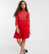 Little Mistress Petite mini length 3/4 sleeve lace dress in tomato red