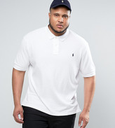 Polo Ralph Lauren Plus Pique Polo Slim Fit In White
