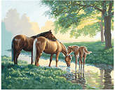Dimensions Paint-by-Number Kit - Horses By A Stream
