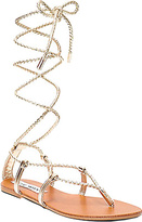 Steve Madden Women's Werkit Lace Up Sandal