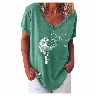 Lazzboy 1st Lazzboy Women Short Sleeve Top Dandelion Print V Neck Casual Loose Slouchy Ladies T Shirt Blouse Size 6-20 (20