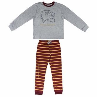 CERDA ARTESANIA Boy's Pijama Largo Single Jersey Harry Potter Gryffindor Pyjama Sets