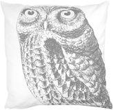 B. Smith Park Owl Throw Pillow